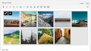 WordPress 3.9 - Aktuální náhled galerie
