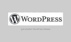 WordPress 4.5: Možnost nastavení vlastního loga